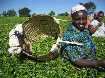 La Fundación Kimlea, un faro en África.