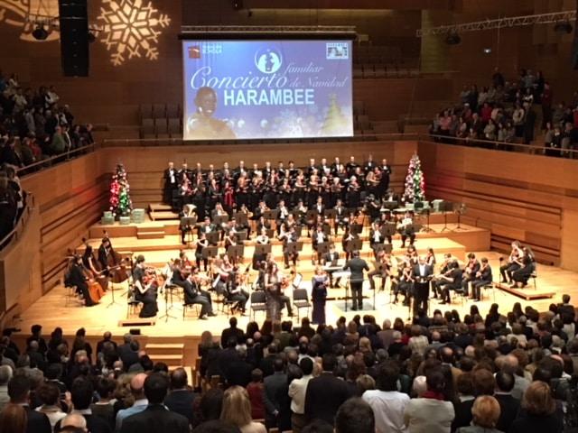 Concierto de Navidad en Valladolid y en Santander