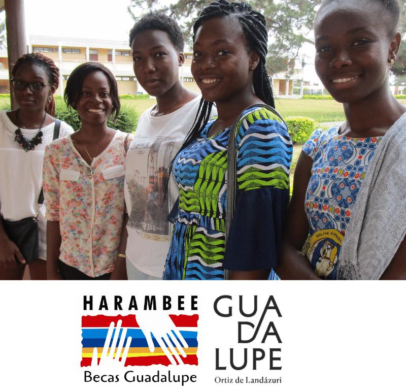 Descripción del Programa de Becas Guadalupe / Guadalupe Scholarship program