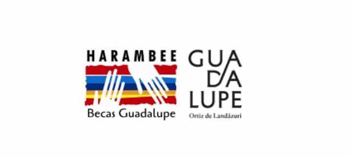 Programa Becas Guadalupe Convocatoria 2019 /General conditions, edition 2019 Guadalupe Scholarship Program