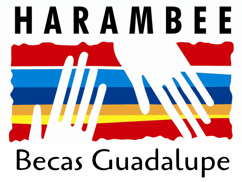 Aplazamiento del Proyecto Becas Guadalupe | Guadalupe Scholarship: Postponement of Project