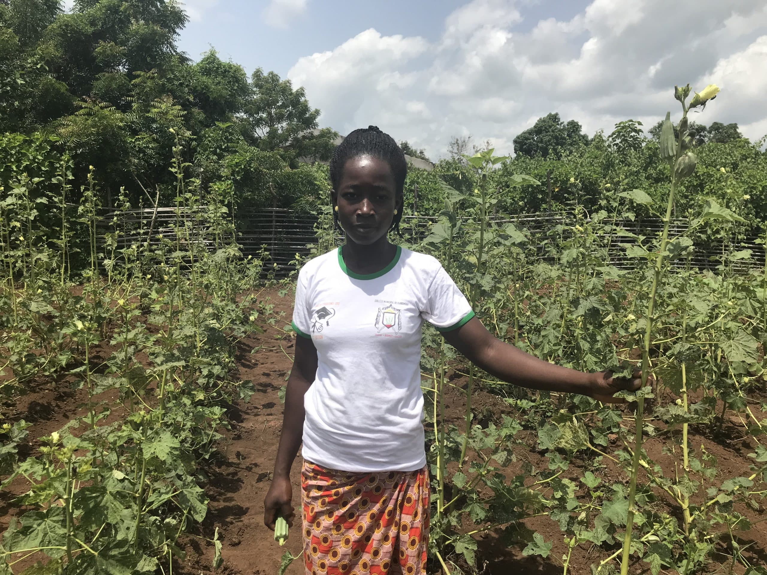 Seguridad alimentaria en Kinshasa y Bajo Congo